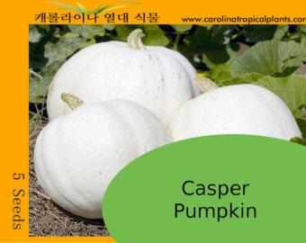 Casper Pumpkin