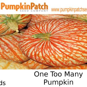 One Too Many Pumpkin Seeds