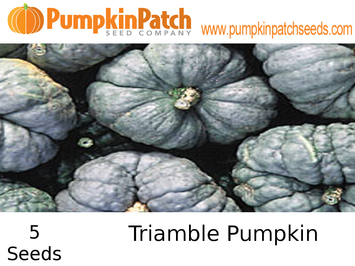 Triamble Pumpkin Seeds